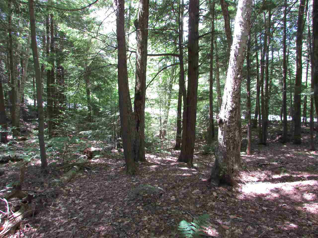 Village of Eastman in Town of Grantham NH  03753 Land for sale $List Price is $6,200