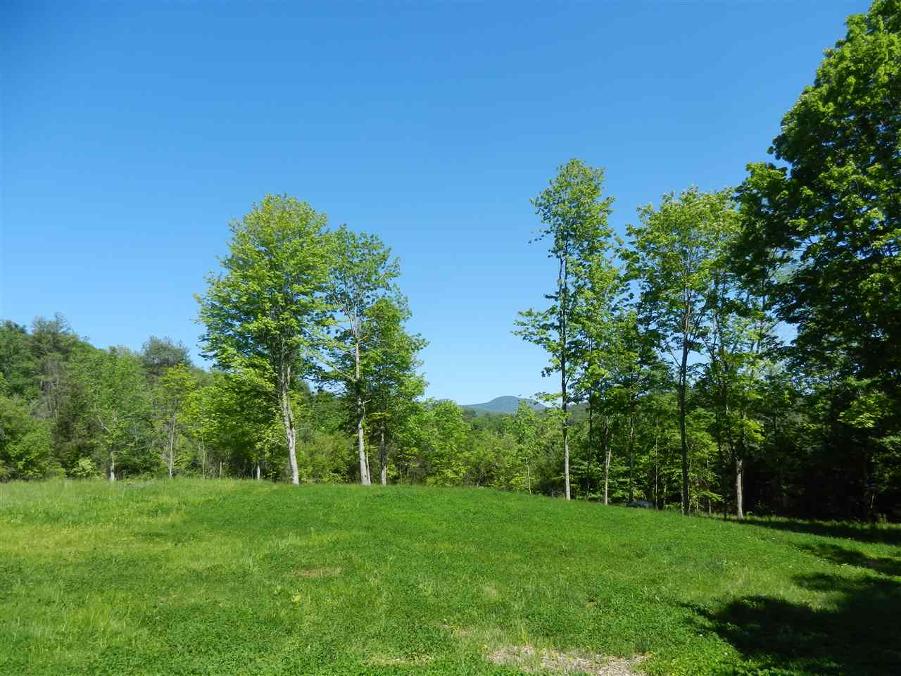 LYME NH LAND  for sale $$575,000 | 62.92 Acres  | Price Per Acre $0