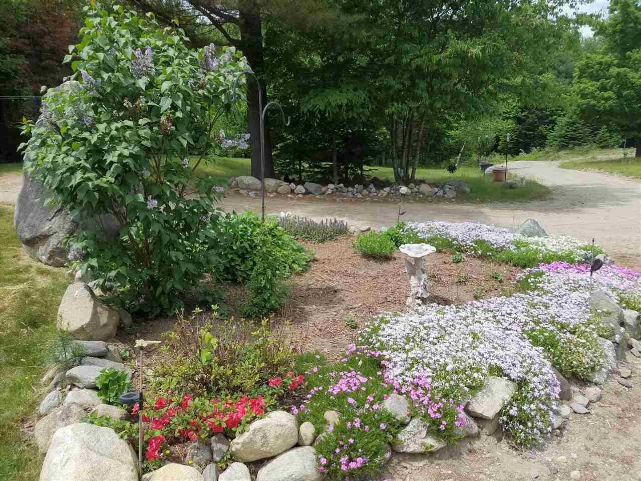 Garden 11554682
