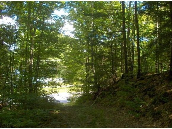 NEWBURY NH LAND  for sale $$189,000 | 10.78 Acres  | Price Per Acre $0  | Total Lots 2