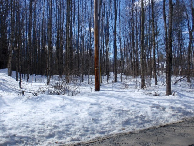 WALLINGFORD VT LAND  for sale $$35,000 | 1.38 Acres  | Price Per Acre $0