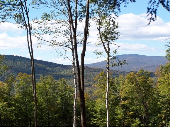 GROTON NH LAND  for sale $$49,900 | 6.46 Acres  | Price Per Acre $0  | Total Lots 2