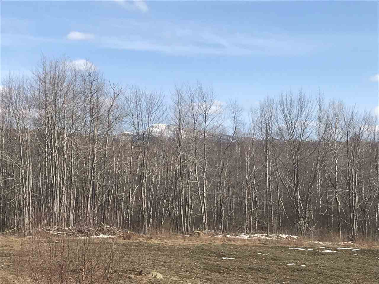 """Large parcel of open and wooded undeveloped land with lots of Town road frontage. This site is """"estate quality"""" or could be multi-lot sub-division. Soil tests have been performed. Mt Mansfield Views, potential for 2000 maple syrup taps, walking trails, excellent southwest exposure. Truly a unique property conveniently located with lots of potential."""