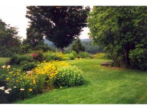 Lovely Gardens 11631144