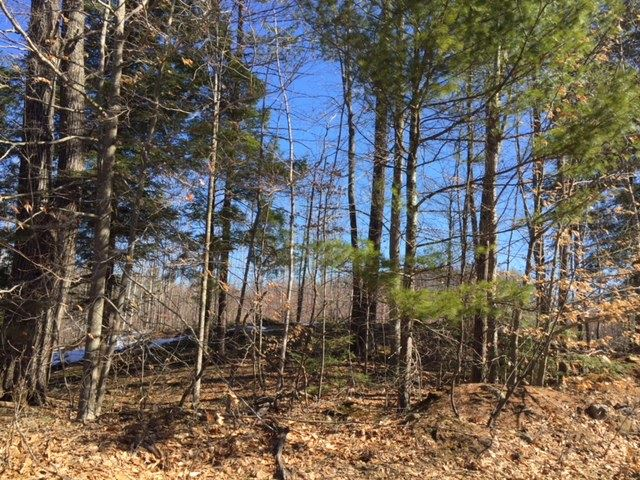 BOSCAWEN NH LAND  for sale $$59,000 | 11.05 Acres  | Price Per Acre $0