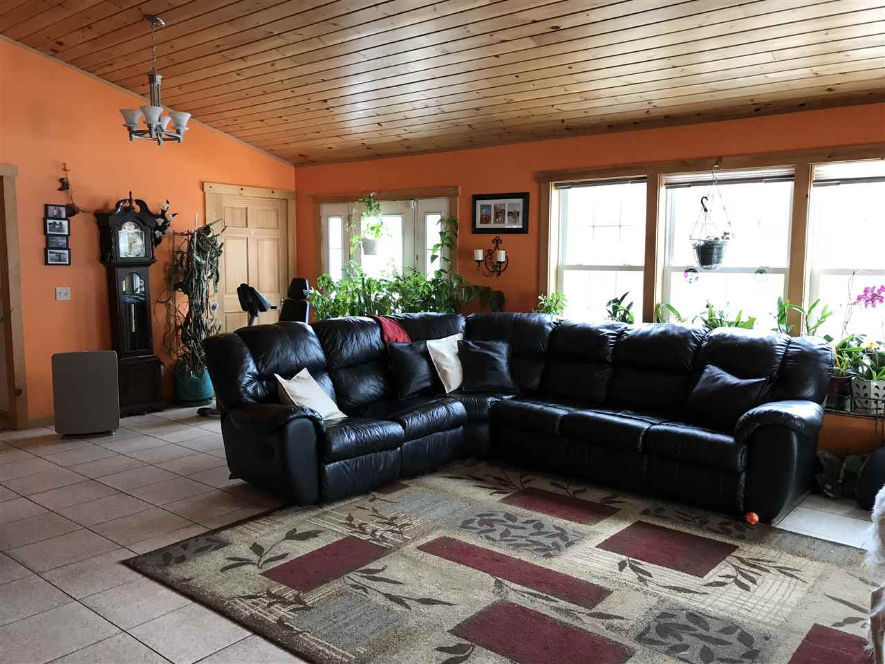 Large Living Room 11658795
