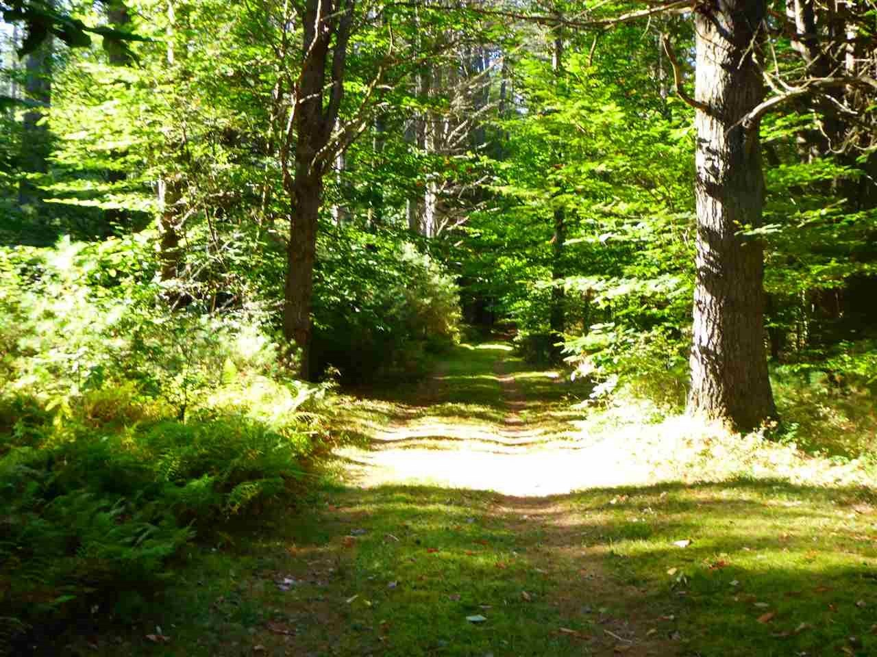 VILLAGE OF POST MILLS IN TOWN OF THETFORD VT LAND  for sale $$399,000 | 95 Acres  | Price Per Acre $0  | Total Lots 2