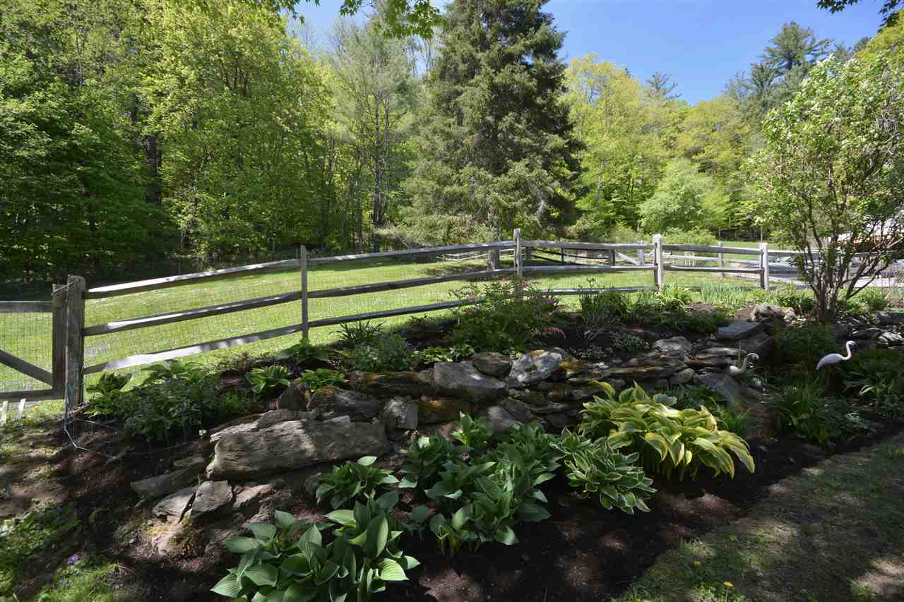 Established Perennials 11987702