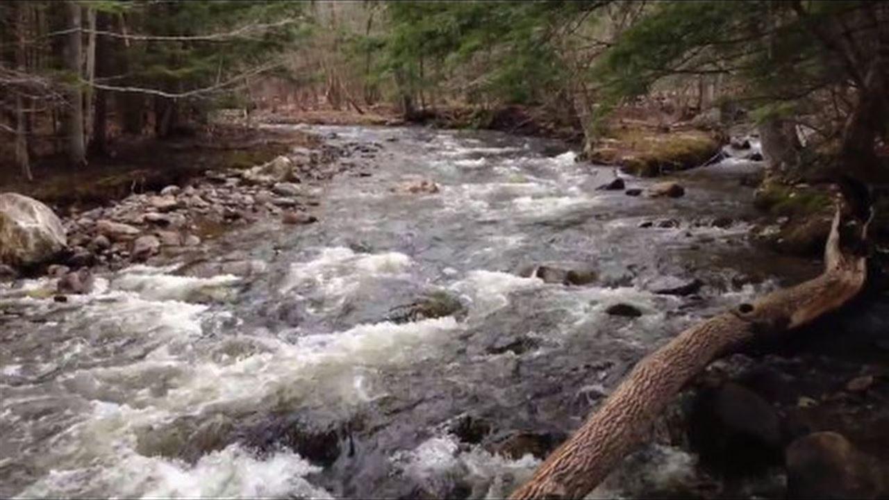 MLS 4687457: 793 Stinson Lake, Rumney NH