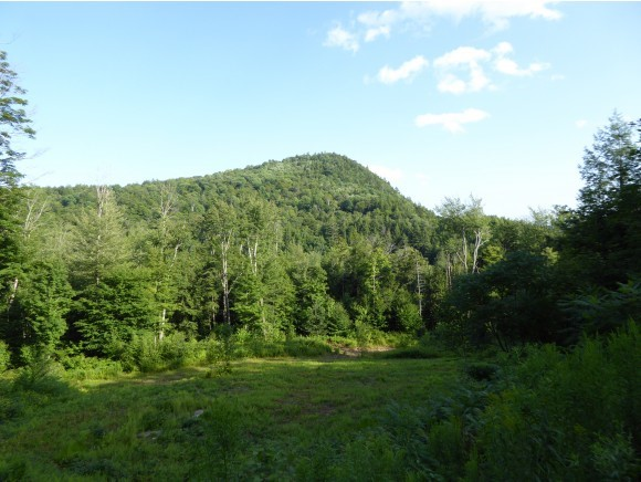 Plymouth VT Land  for sale $List Price is $89,000