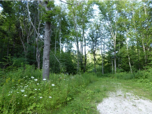 PLYMOUTH VT LAND  for sale $$83,000 | 10.23 Acres  | Price Per Acre $0