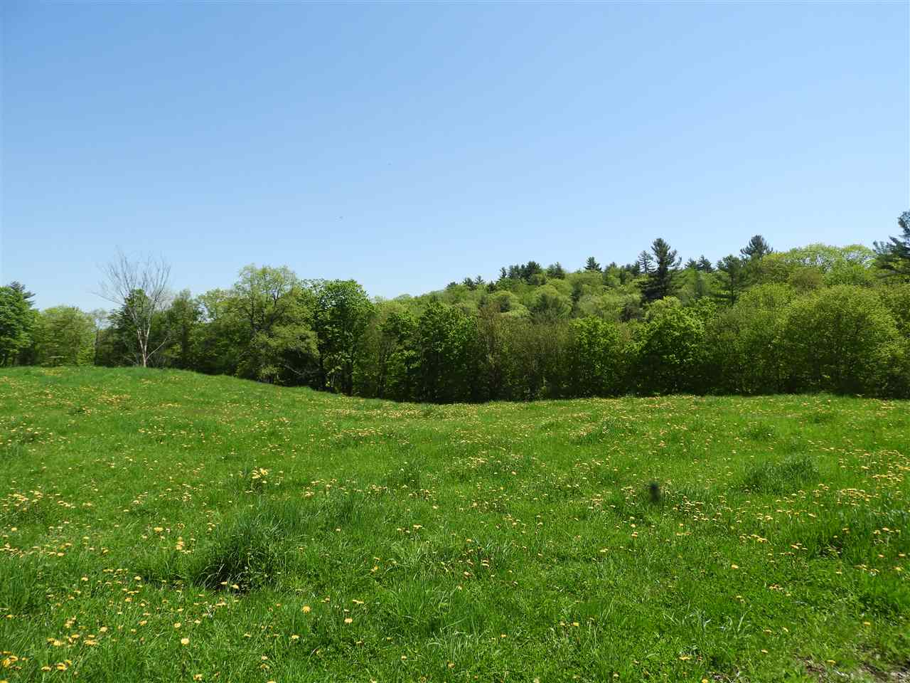 ALSTEAD NHLAND  for sale $$148,000 | 13.7 Acres  | Price Per Acre $0  | Total Lots 4
