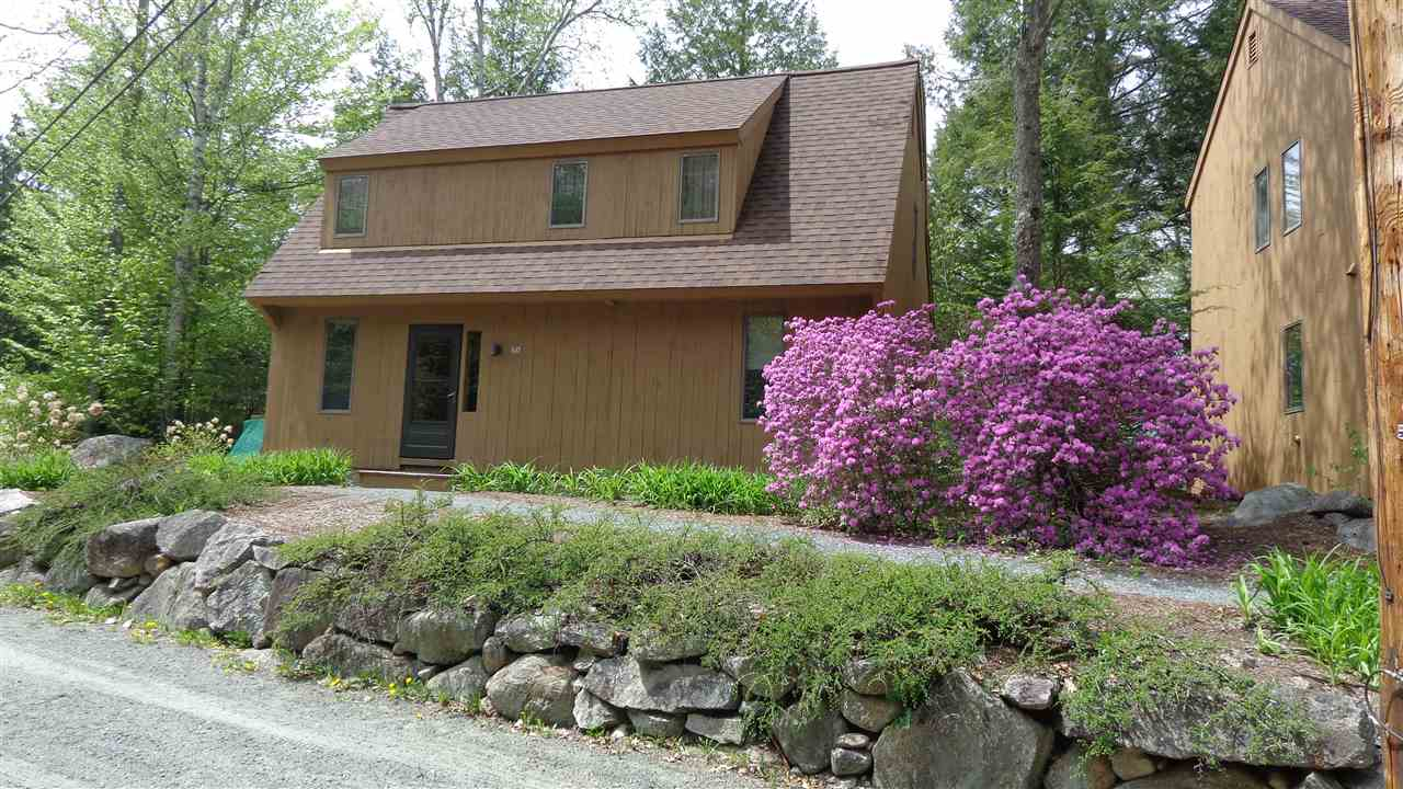 Village of Eastman in Town of Grantham NH  03753 Condo for sale $List Price is $134,900