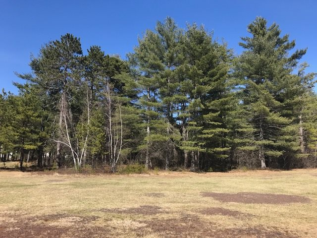 OSSIPEE NH LAND  for sale $39,900