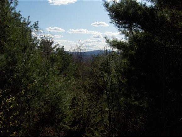 SPRINGFIELD VT LAND  for sale $$95,000 | 35.26 Acres  | Price Per Acre $0