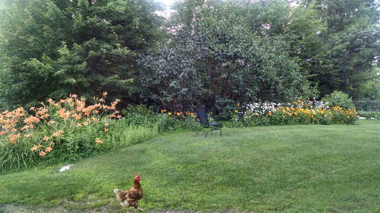 Photo of 79 Griffin Road Deerfield NH 03037