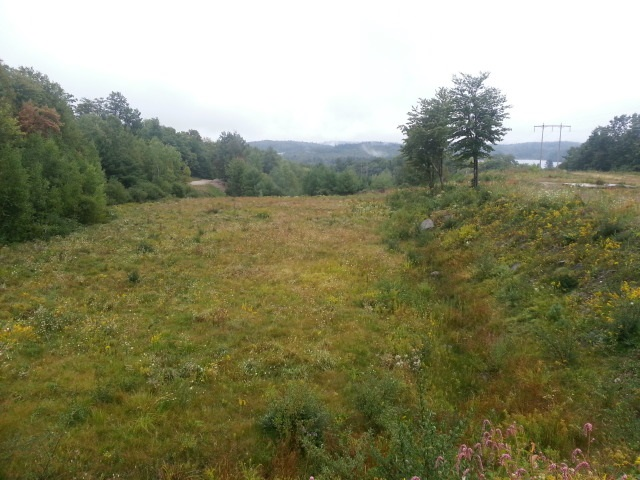SPRINGFIELD NH LAND  for sale $$199,500 | 5.33 Acres  | Price Per Acre $0  | Total Lots 3