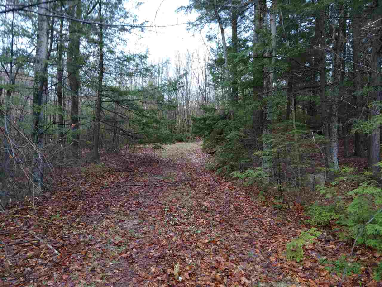 OSSIPEE NH  LAND  for sale $199,900