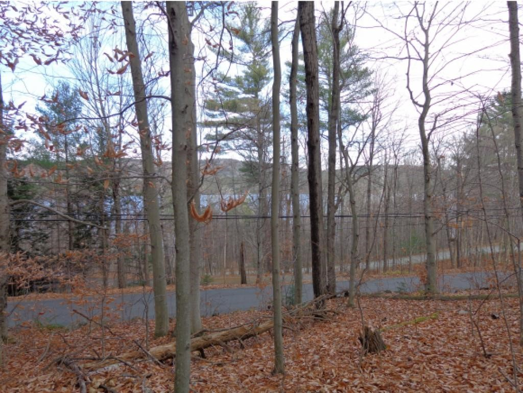 NEW LONDON NH LAND  for sale $$106,000 | 1.9 Acres  | Price Per Acre $0  | Total Lots 3