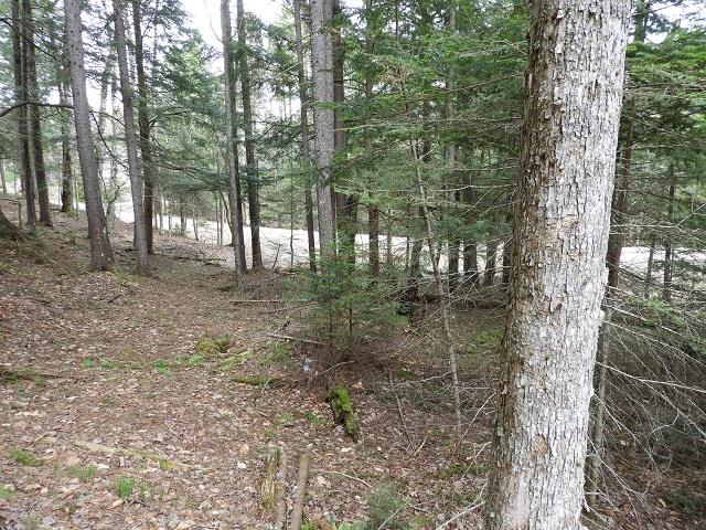 Washington NH 03280 Land for sale $List Price is $17,000