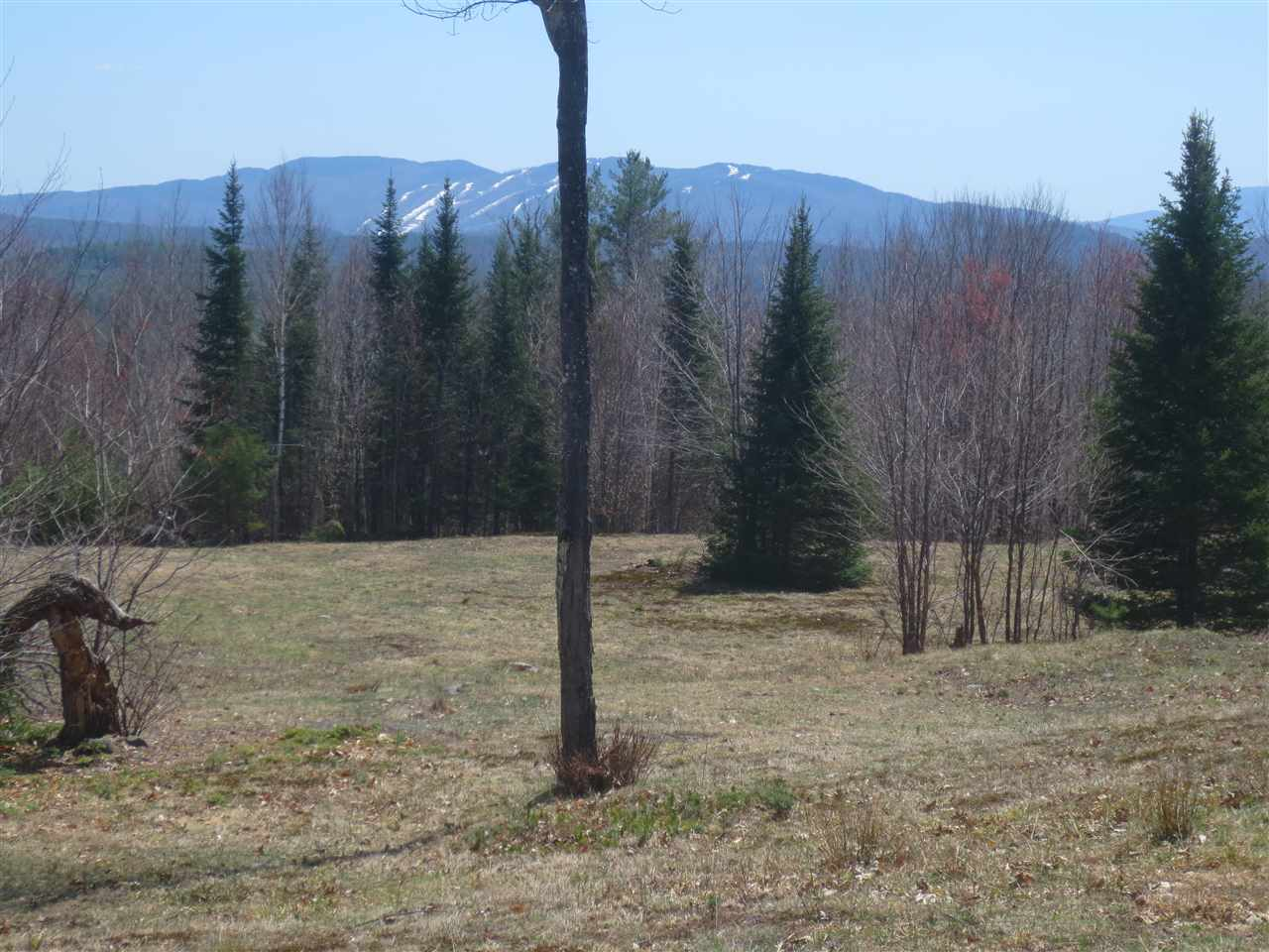 DANBURY NH LAND  for sale $$149,900 | 78.11 Acres  | Price Per Acre $0  | Total Lots 2