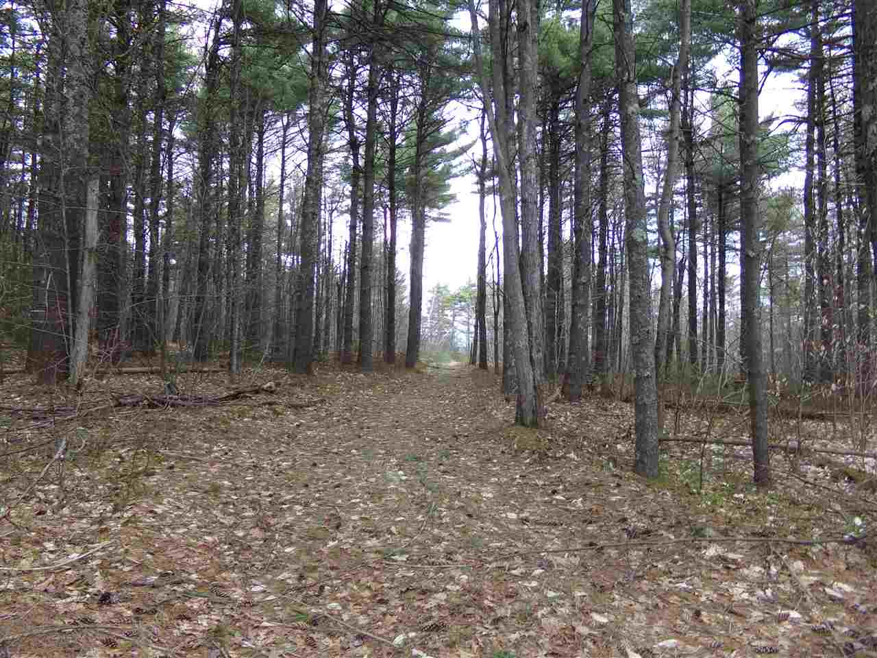 VILLAGE OF CENTER OSSIPEE IN TOWN OF OSSIPEE NH  LAND  for sale $99,000