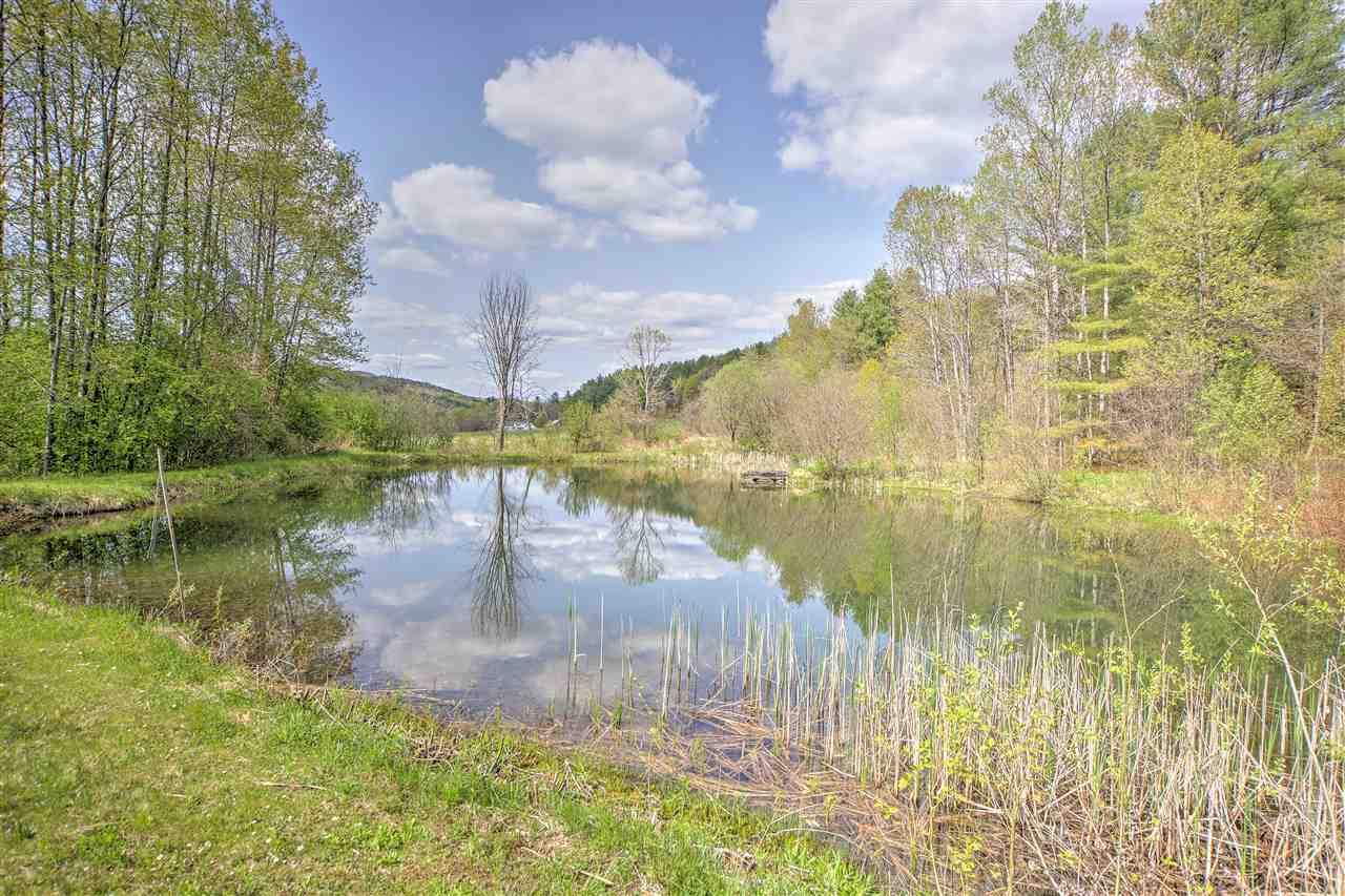 Gorgeous Swimming Pond! 11901163