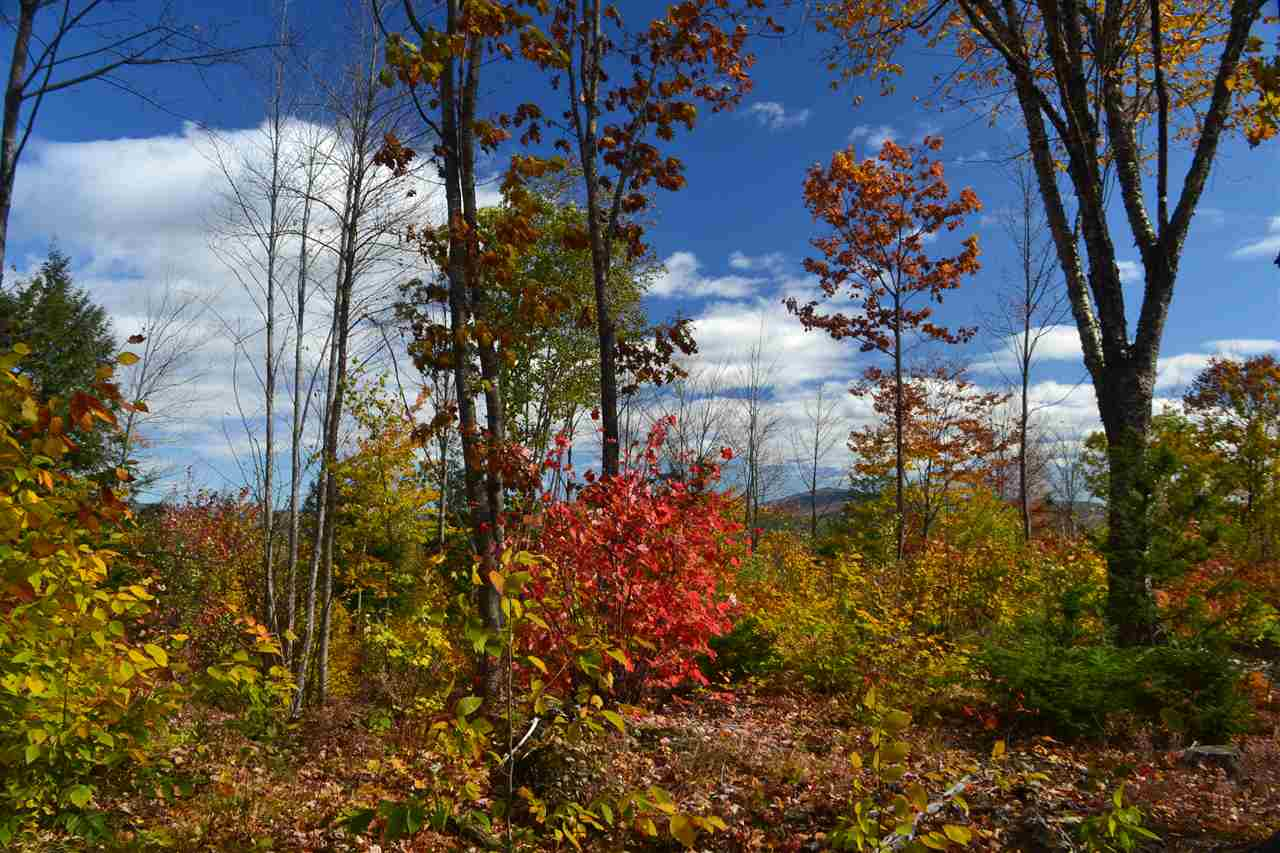 ALEXANDRIA NH LAND  for sale $$135,672 | 67 Acres  | Price Per Acre $0  | Total Lots 2