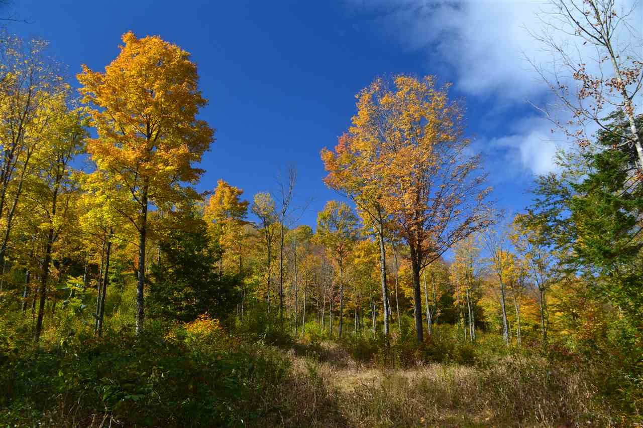 ALEXANDRIA NH LAND  for sale $$127,369 | 63 Acres  | Price Per Acre $0  | Total Lots 2