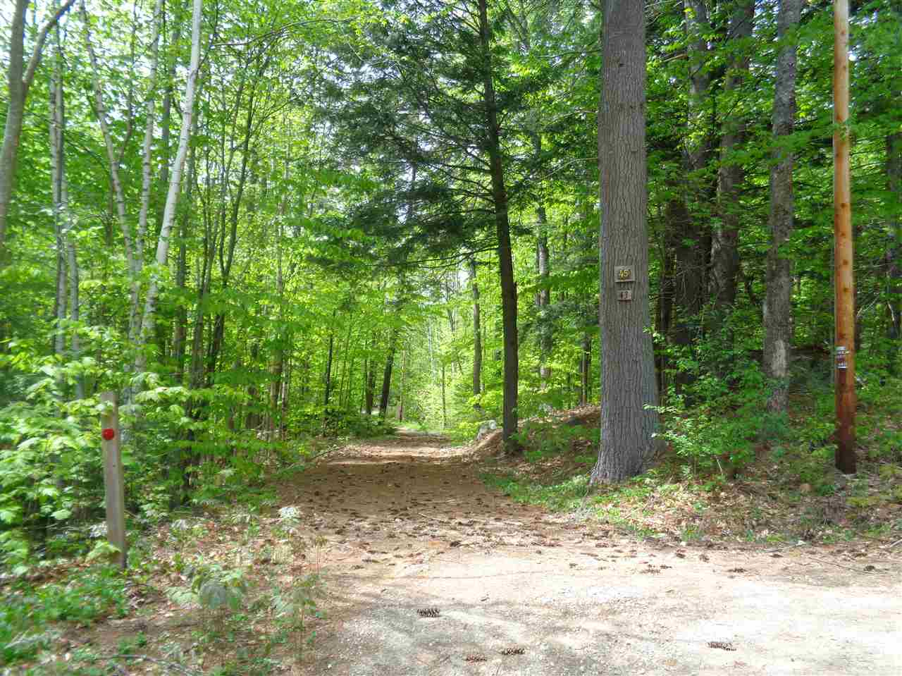 GROTON NH LAND  for sale $$68,500 | 5.3 Acres  | Price Per Acre $0  | Total Lots 2