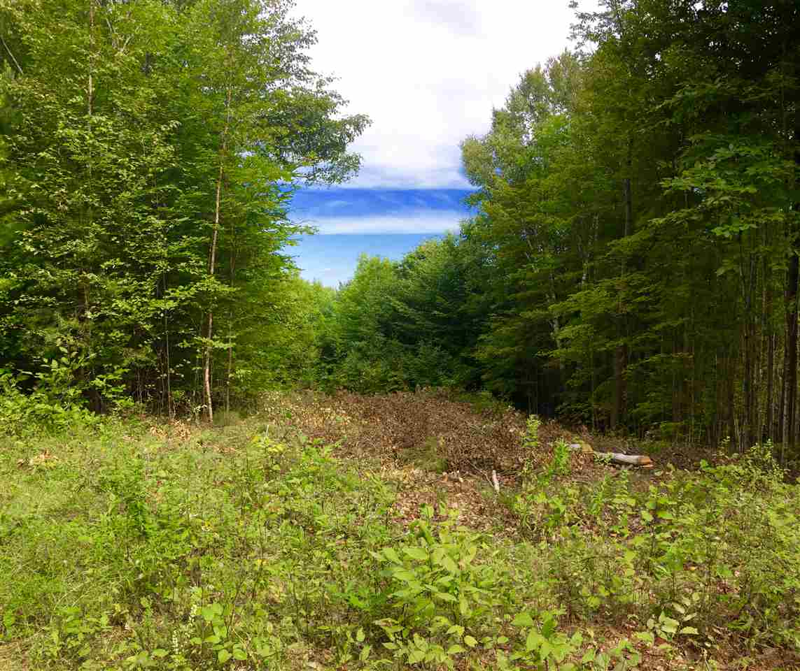 Hartland VT Land  for sale $List Price is $51,750