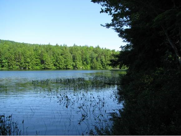 WINDSOR NH LAND  for sale $$90,000 | 0.74 Acres  | Price Per Acre $0