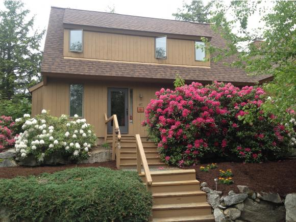 Village of Eastman in Town of Grantham NH  03753 Condo for sale $List Price is $189,900