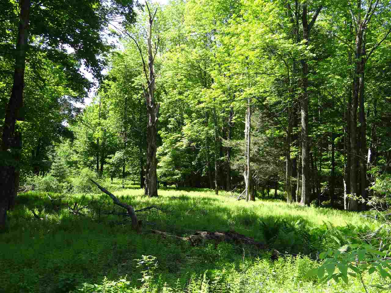 HARTFORD VT LAND  for sale $$295,000 | 115.48 Acres  | Price Per Acre $0