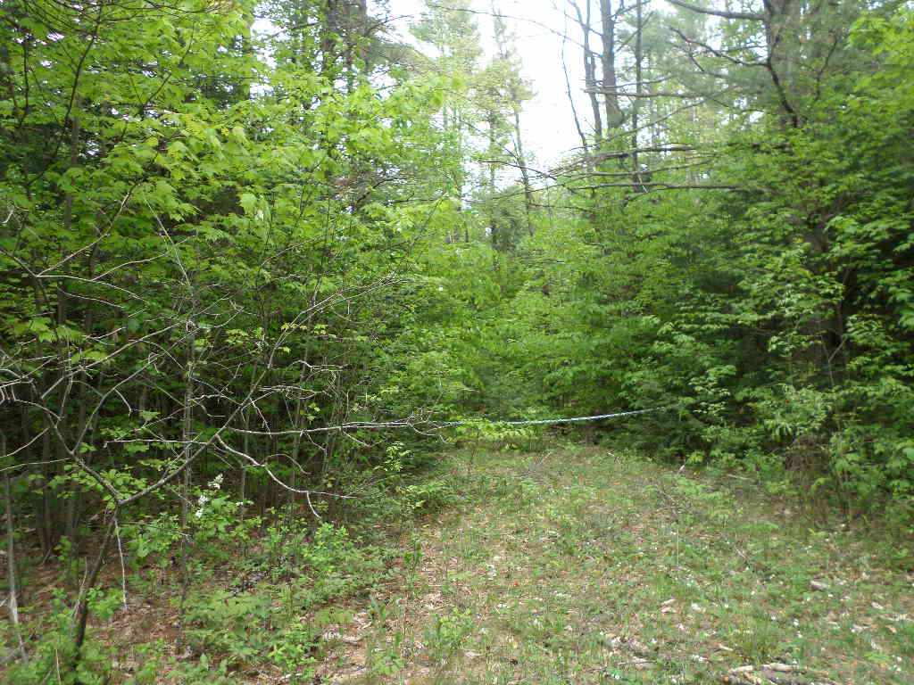CANAAN NH LAND  for sale $$185,000 | 130 Acres  | Price Per Acre $0