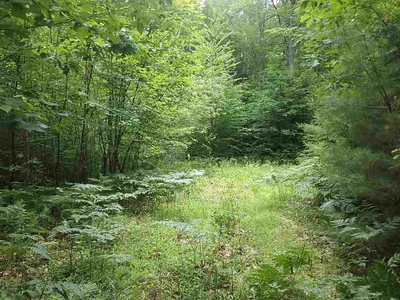 Lempster NH 03605 Land for sale $List Price is $29,000