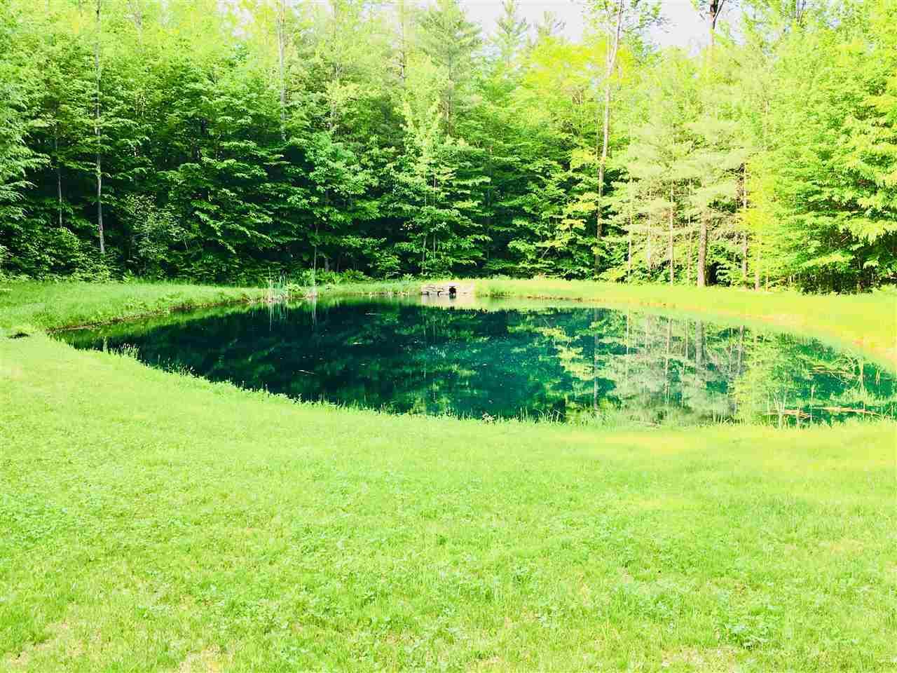 pond 12036481