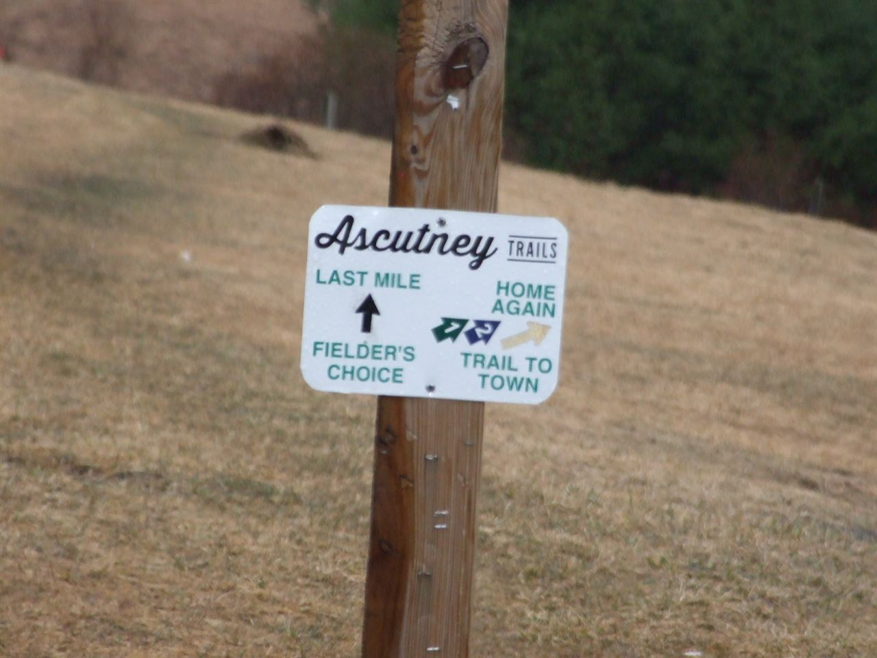 Ascutney Outdoors Trails 12016416