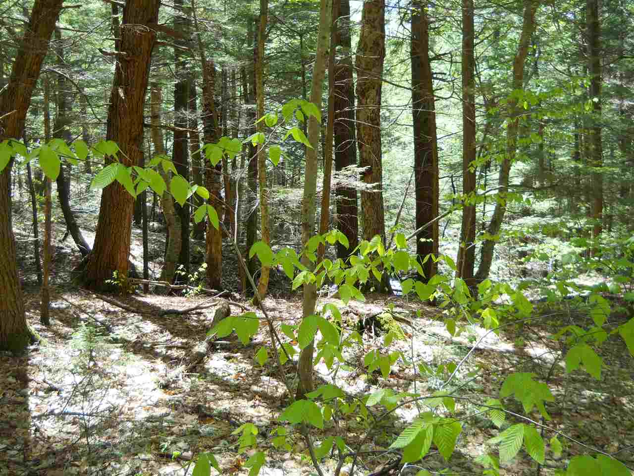 Lempster NH 03605 Land for sale $List Price is $24,900