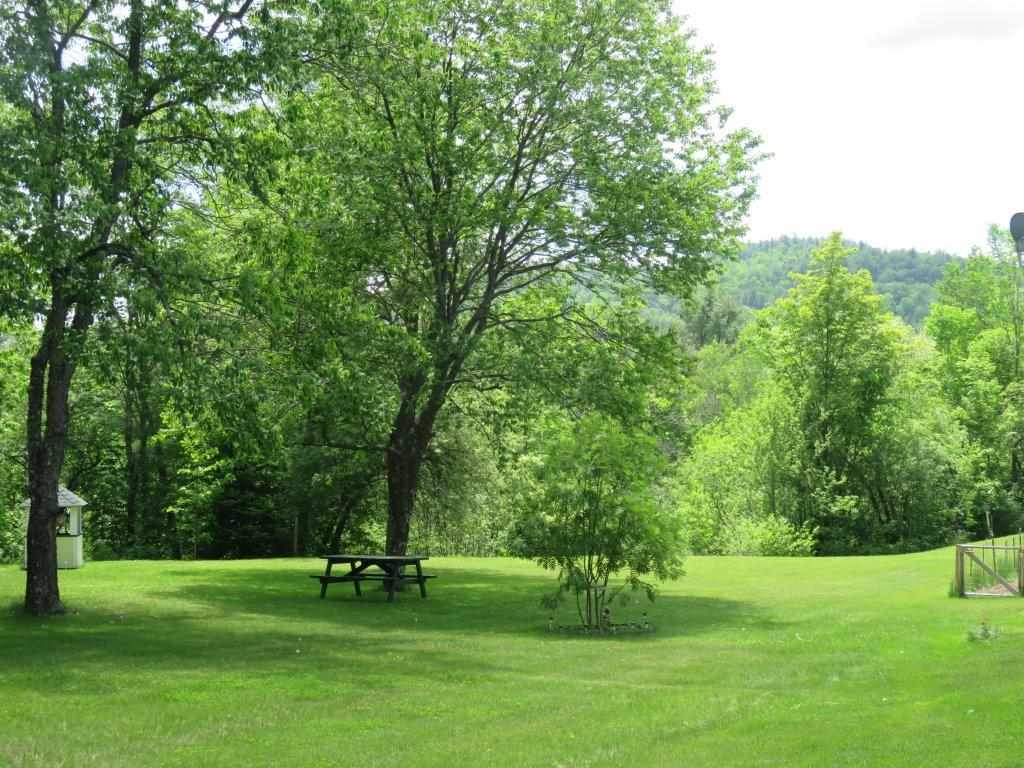 hillside views 12054091
