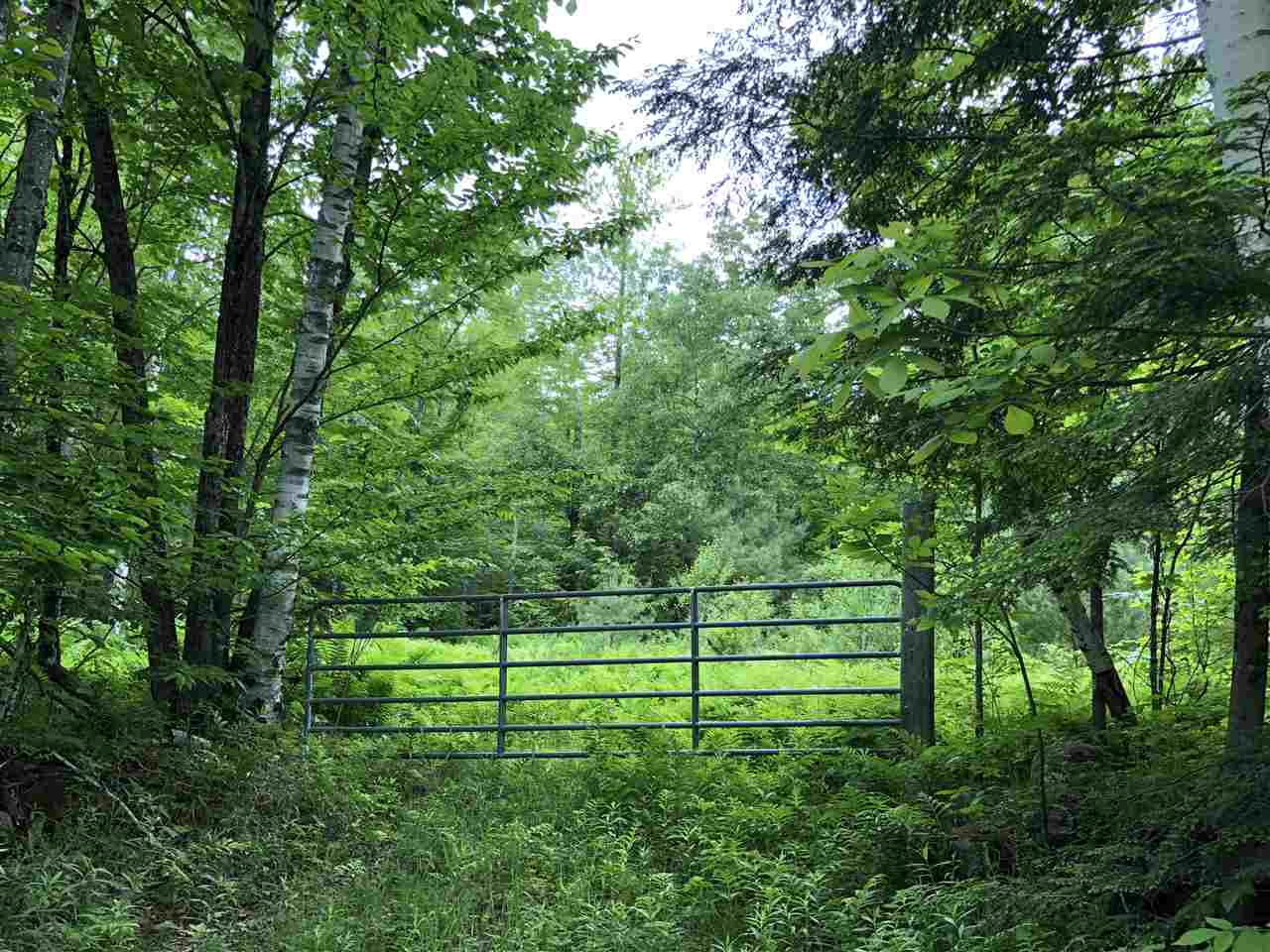 Baltimore VT 05143Land for sale $List Price is $75,000