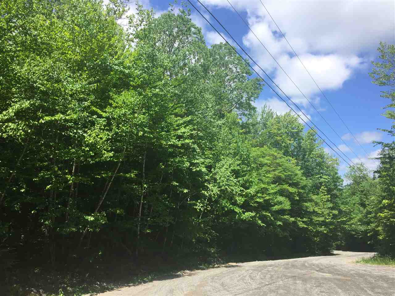 Village of Eastman in Town of Grantham NH  03753 Land for sale $List Price is $18,000