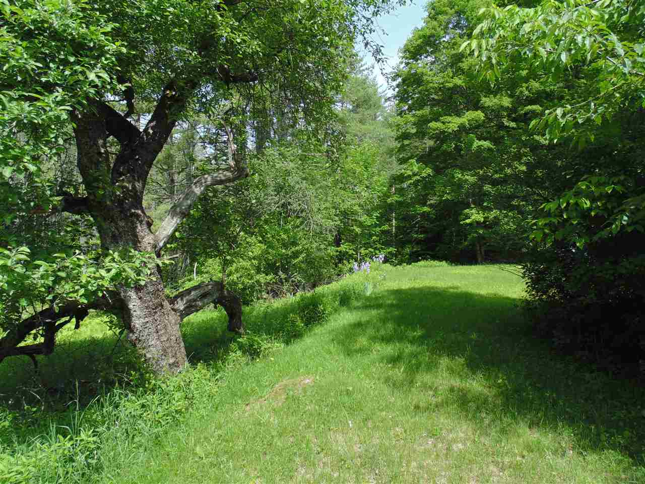 Norwich VT 05055 Land for sale $List Price is $519,000