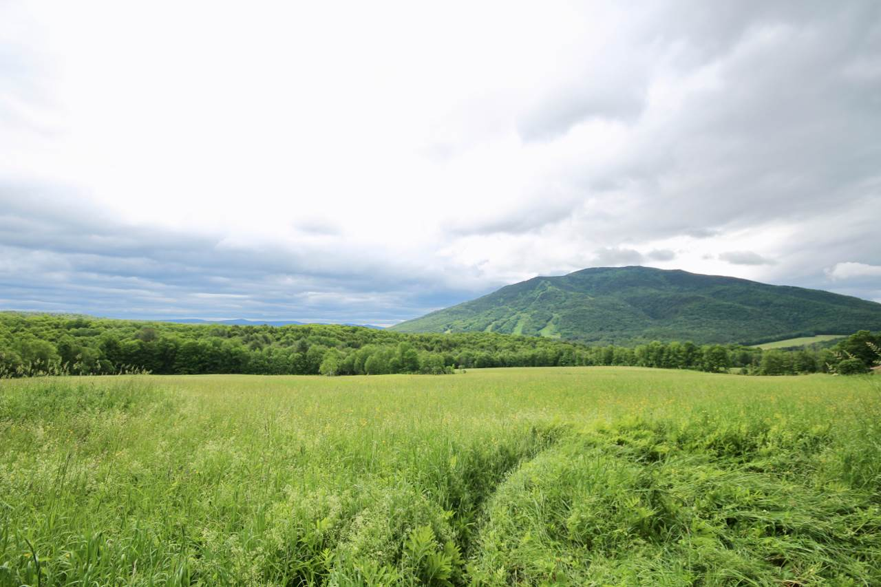 West Windsor VT Land  for sale $List Price is $295,000