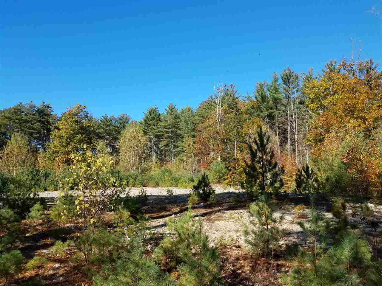OSSIPEE NH LAND  for sale $125,000