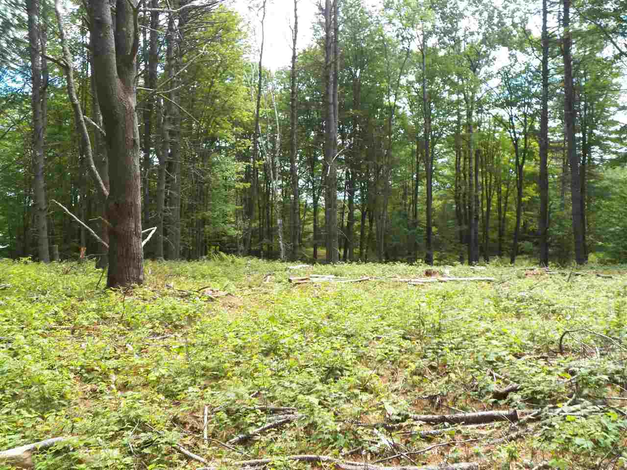 Norwich VT 05055 Land for sale $List Price is $225,000