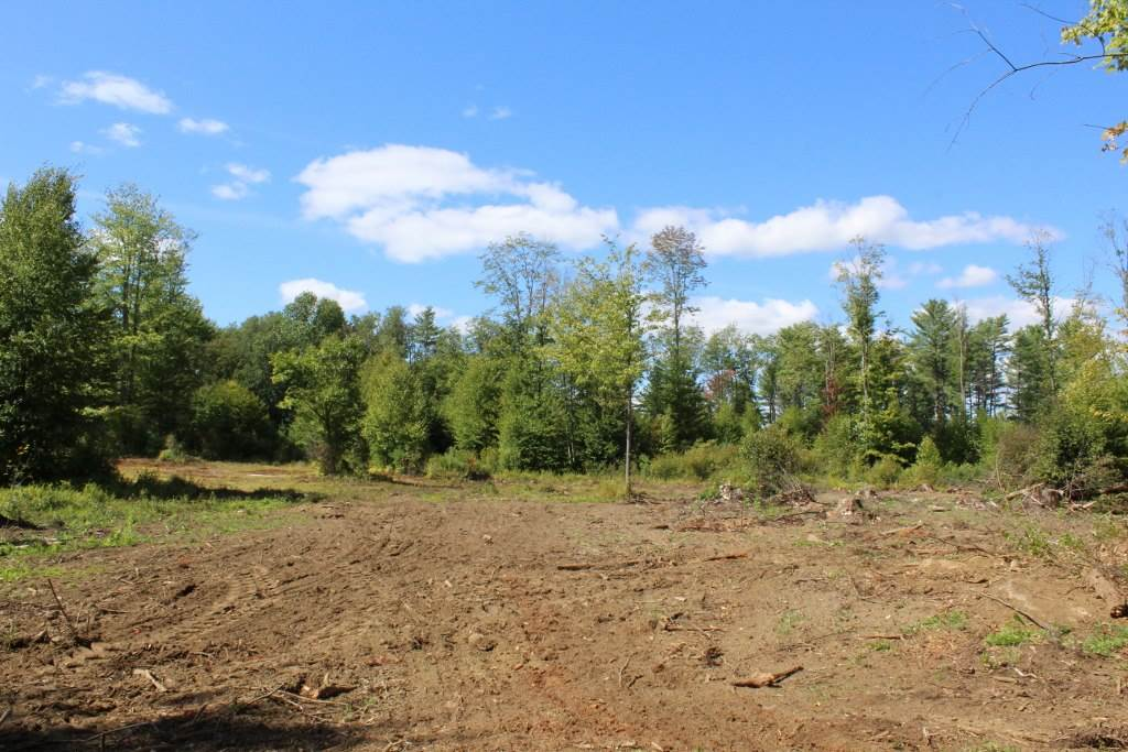 Springfield VT Land  for sale $List Price is $54,900