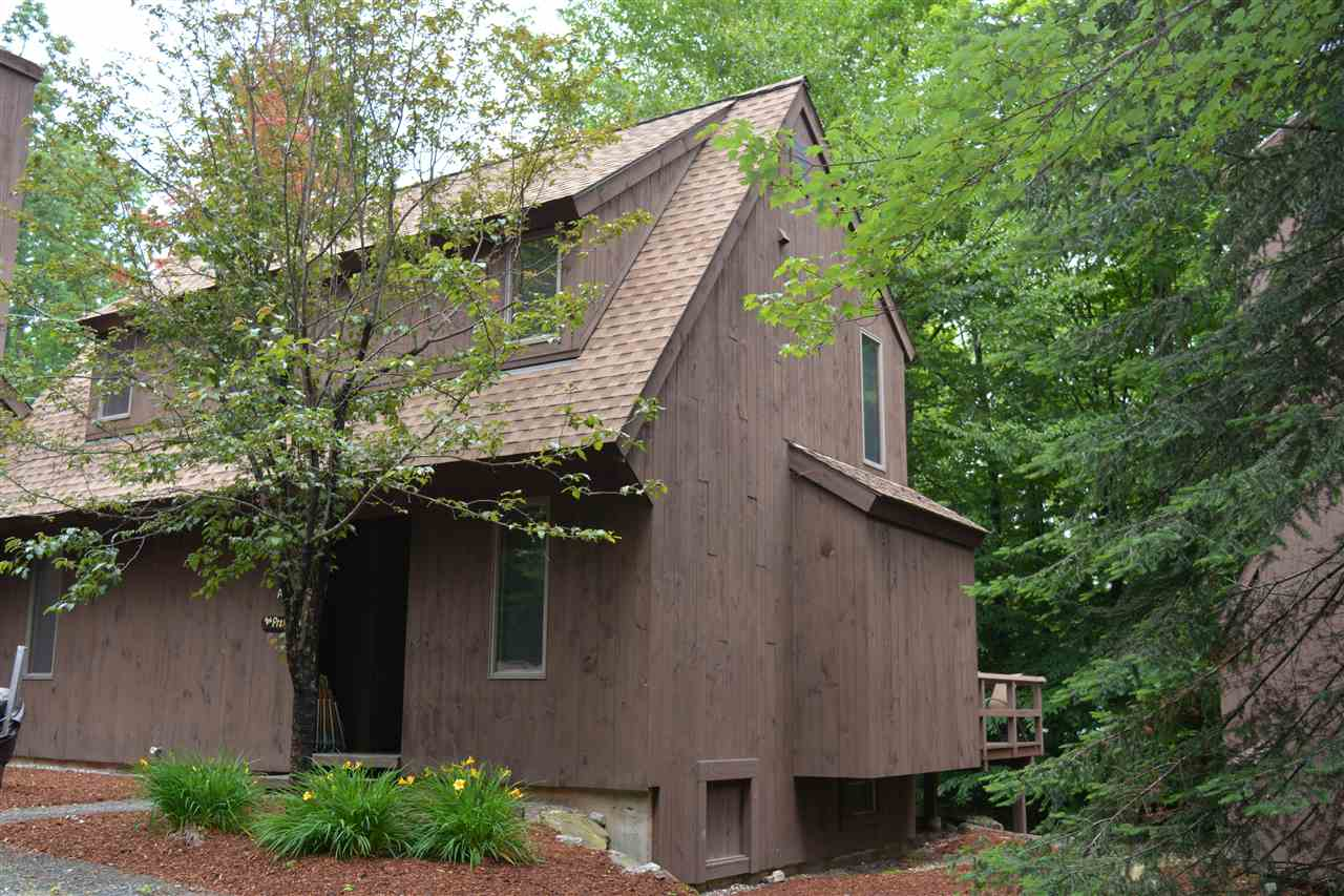 Village of Eastman in Town of Grantham NH  03753 Condo for sale $List Price is $149,039