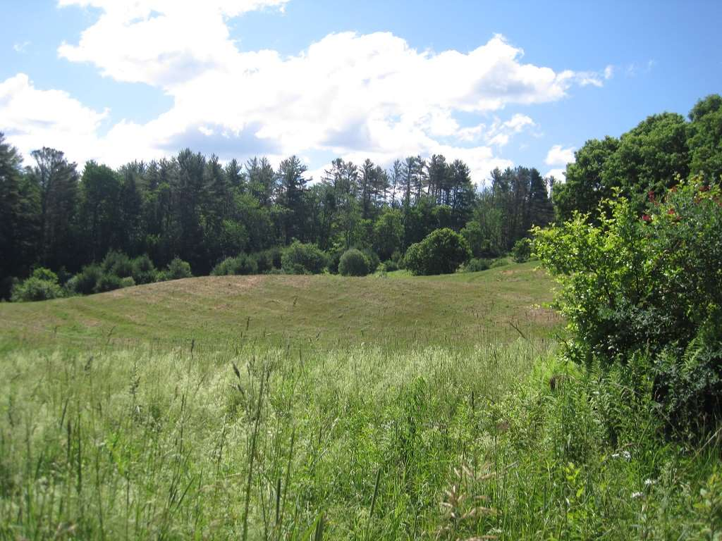 PLAINFIELD NH LAND  for sale $$85,000 | 5.01 Acres  | Price Per Acre $0