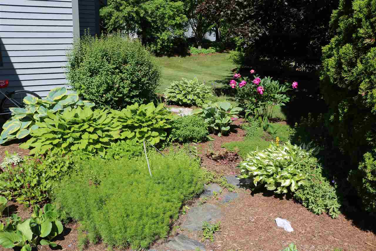 Landscaping 12234652